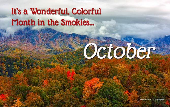 October Things to Do for Fall Fun in the Smokies
