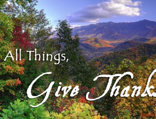 Thanksgiving 2015 in the Smokies
