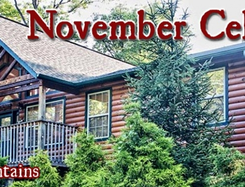 November Events and Holiday Festivals