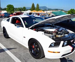 Ford Mustang Car Show