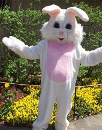Old Mill Restaurant Easter Brunch Easter Bunny