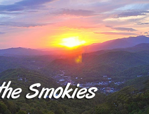 Easter in the Smokies