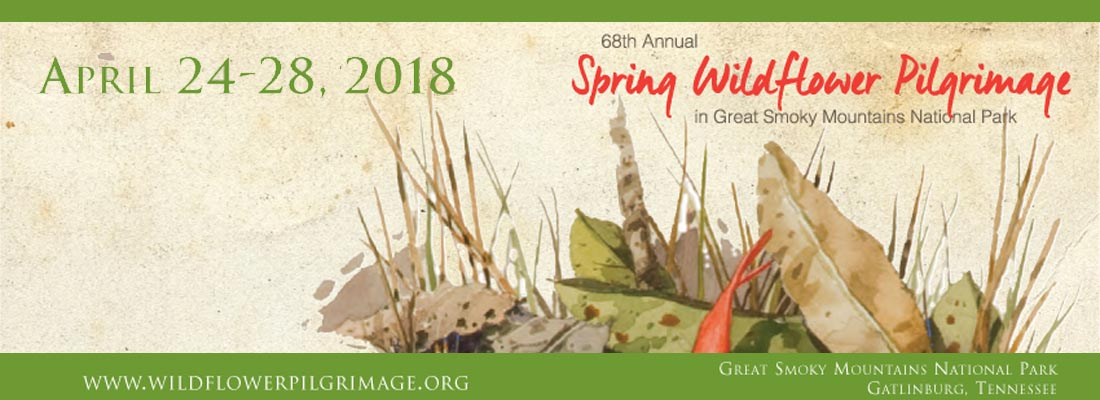 Gatlinburg 2018 Spring Wildflower Pilgrimage - Great Smoky Mountains National Park