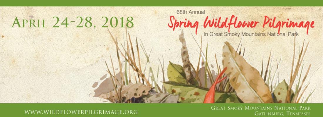 Gatlinburg 2018 Spring Wildflower Pilgrimage - Great Smoky Mountains National Park