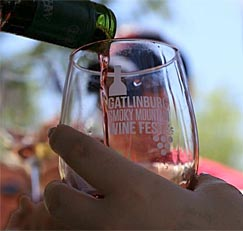 Gatlinburg Wine Tour and Smoky Mountain Winefest Weekend