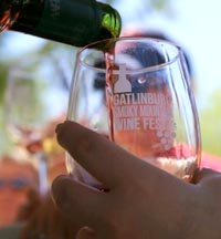 Smoky Mountain Winefest and Gatlinburg Wine Tour